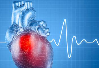 A brief introduction to cardiovascular diseases | mHospitals